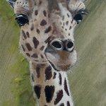 giraffe-jpg