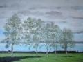 Ostfrieische Bäume