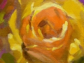 gelbe-rose-in-oel-gemalt-media