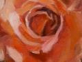 rose-oelbild-media